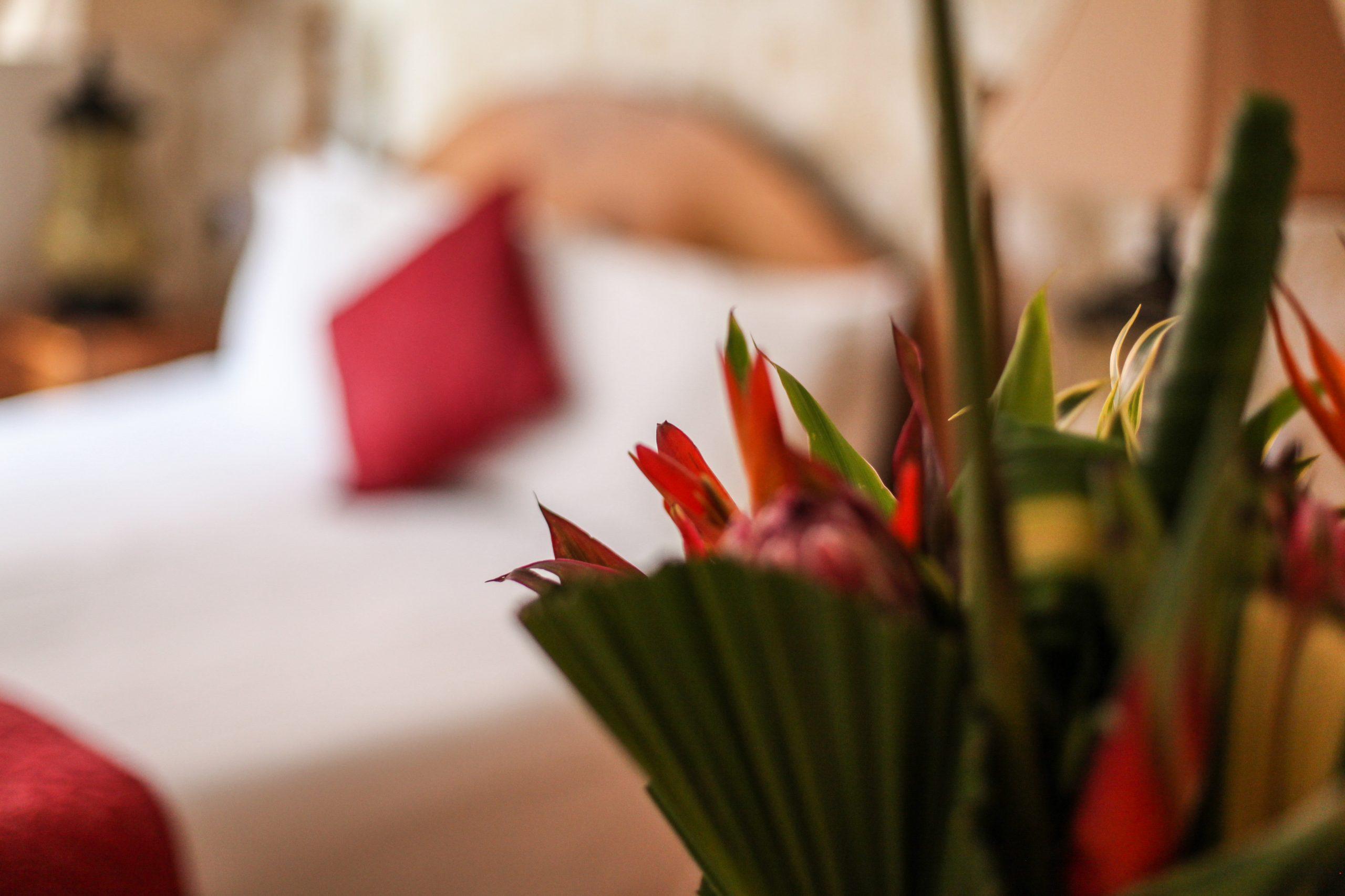 Seacliffe_Hotel_290